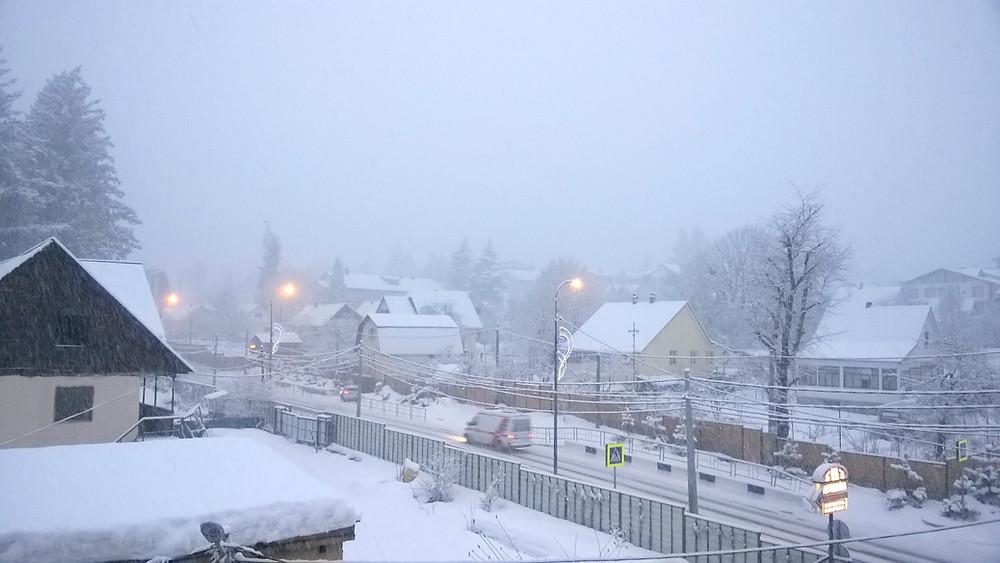 Снег в Красной поляне