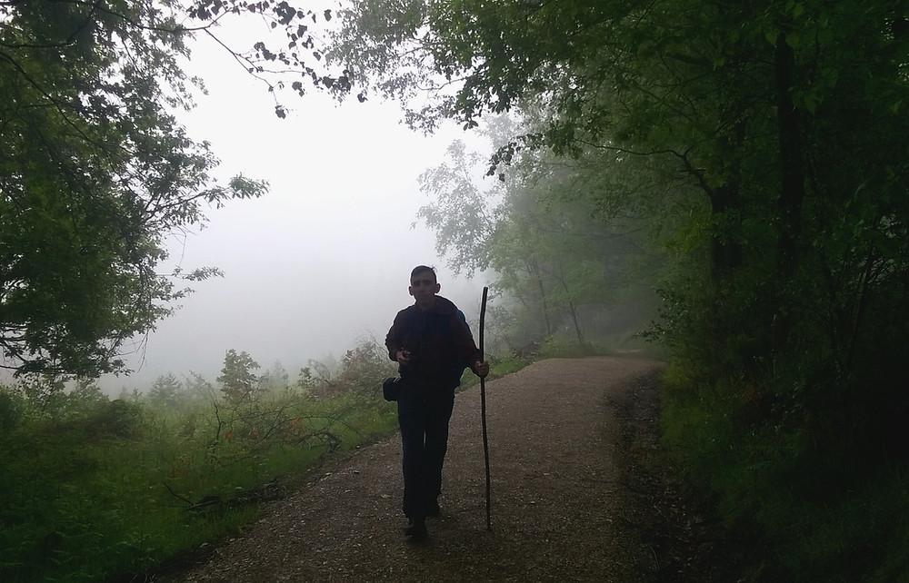 Пилигрим в тумане