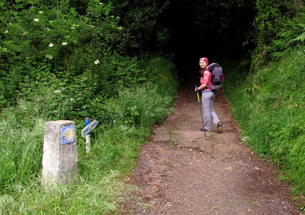 Итоги о Camino Primitivo-2017: маршрут, бюджет и общие впечатления