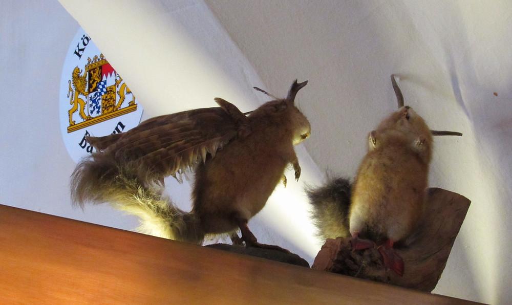 Джекалоп - мифический рогатый заяц с крыльями, который якобы водится в Баварских Альпах