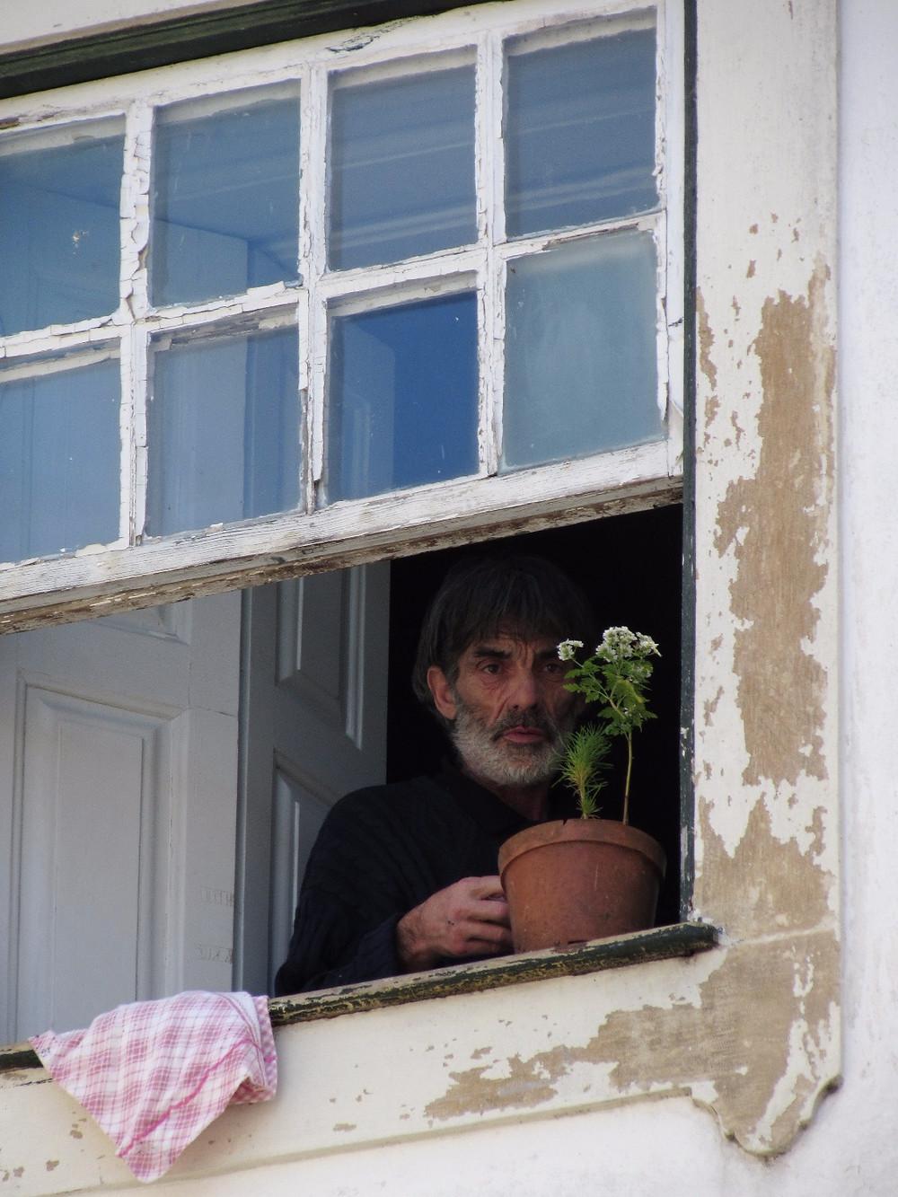 Португалец в окне