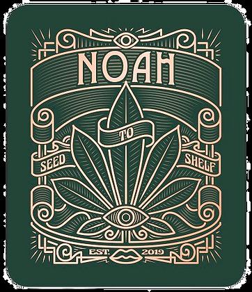 NOAH%2520logo%2520eye_edited_edited.png
