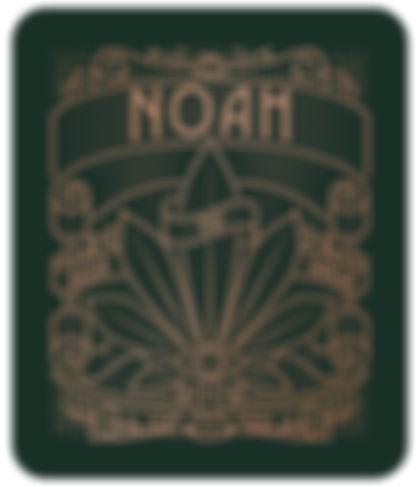 NOAH logo eye.jpg