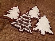 Christmas treesFullSizeRender-2.jpg