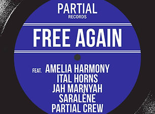 Free Again Riddim 2019 Partial Records.j