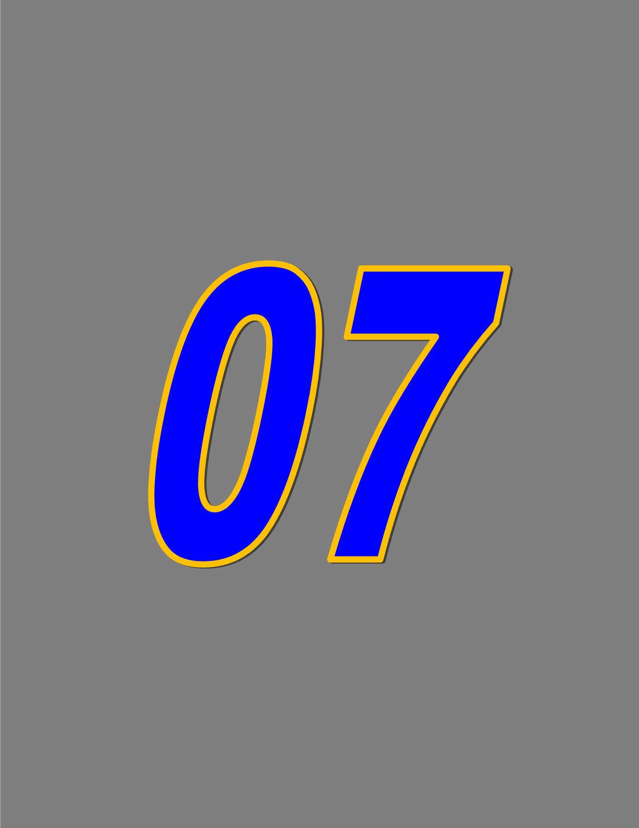 Number 07