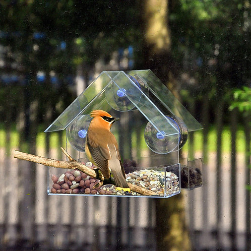 Clear Glass Window Bird Feeders Glass Viewing Bird