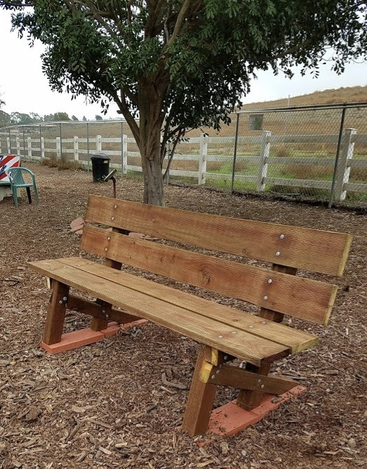 Donated Park Bench