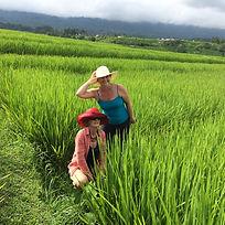 Bali Village Life