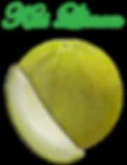 kiss-limon-WHOLE-SLICE-sm.png