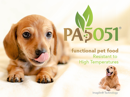 Integration of Plant Based Pediococcus probiotic (PA5051®) into Freeze-dried products as functional