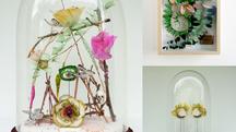 Cabinets de curiosités & trophées poétiques