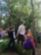 Wild Forest Scool Sessions Ferns Sunshine Children Group chatting under trees