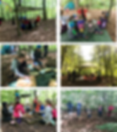 Wild woodland Learning Forest School Sessions!