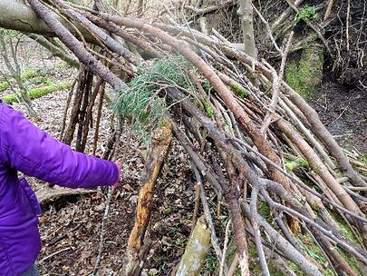 Den building at W.I.L.D Forest School Sesson