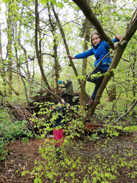 WILD Forest School Session