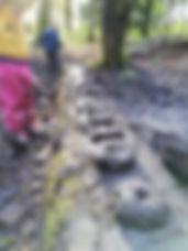 WILD Forest School Session, Mud Pies, Sunshine, Moss, Linn Park