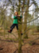 A child tree climbing at W.I.L.D. Forest School Session