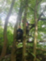 Smiling children climbing tree at WILD Forest School Session, sun shining, green leaves, Sycamore Trees