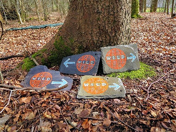 W.I.L.D. signs propped against a tree
