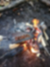 WILD Forest School Session.  Beech nuts are roastd on a trowell over open campfire.  Flames, wood burning.