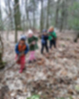 In Woods. Four children lifting branch.  Smiling, helping. Lots of brown leafs on ground.