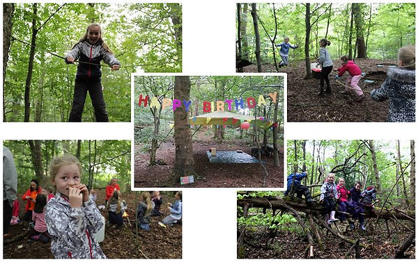 Birthday Parties at WILD. Children playing on ropeswings, climbing trees and cooking on campfire.  Happy Birthday Banner.