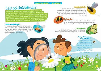 pollinisateur.jpg