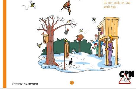 Nourrir les oiseaux l'hiver.jpg