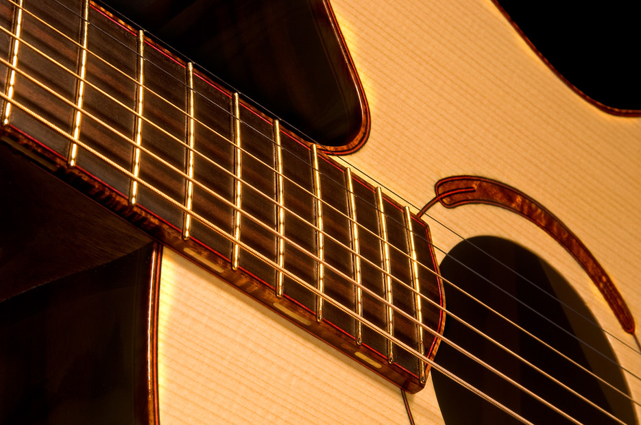Multi-scale guitar, Macassar ebony back & sides / carpathian spruce top