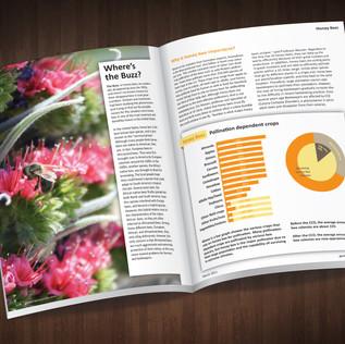Bee Editorial Final.jpg
