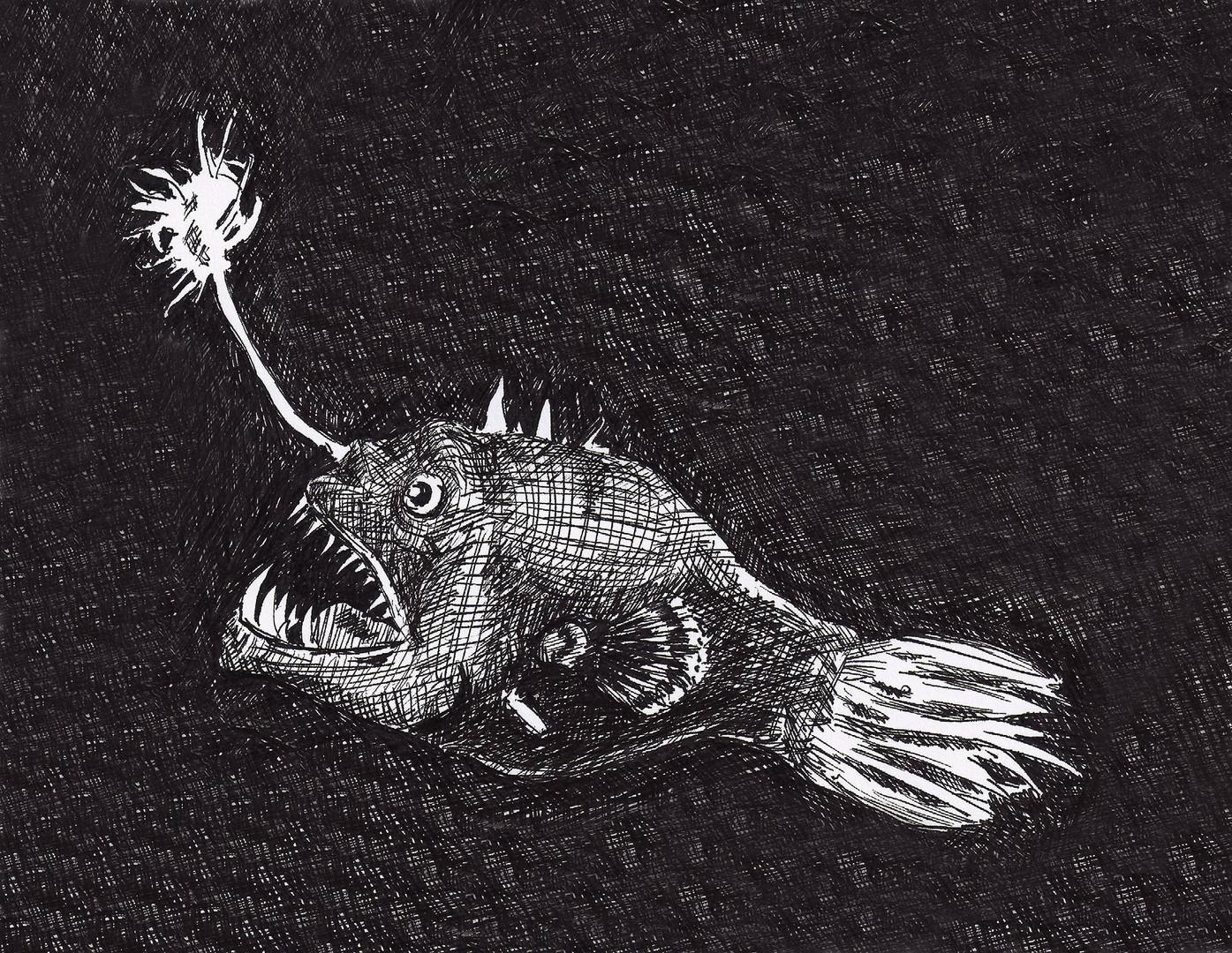 Angler_fish_ink_HD.jpg