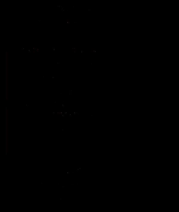 vipsylon.png