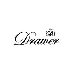 Drawer Logo