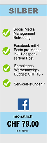 SocialMedia Pakete_Silber.png