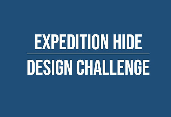 YR 8&9 Hide Project.JPG