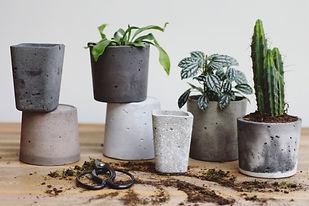 Jakala Brussels I plantes et curiosités végétales, béton design