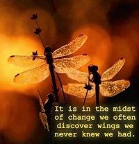 we discover wings.JPG