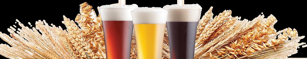 Bira Tüketimi, Bira Fiyatları