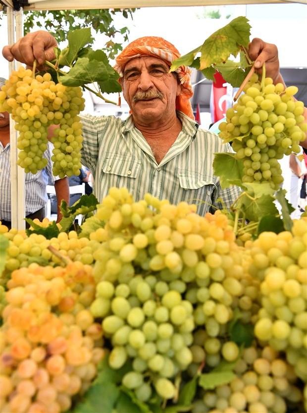 tarım,kuru üzüm,ihracat,şaraplık üzüm