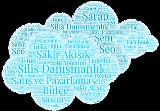 Silis Danışmanlık - Satış ve Pazarlama  Danışmanlığı