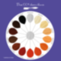 palette-coloration-vegetale.png