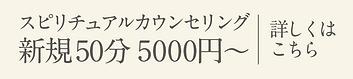 スピリチュアルカスピリチュアルカウンセリング新規50分 5000円〜