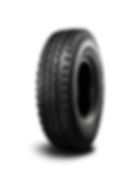 TR668-300x400 (1).png
