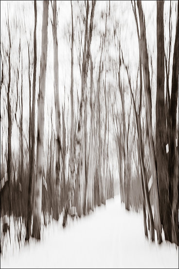Abstract photograph (using intentional camera movement) of a snowy path through the trees in winter