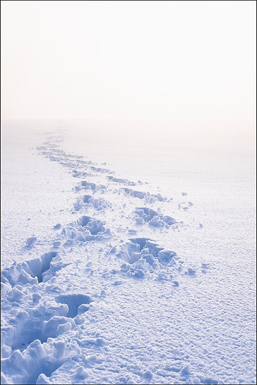 A trail of footsteps in deep snow leads off into the distance