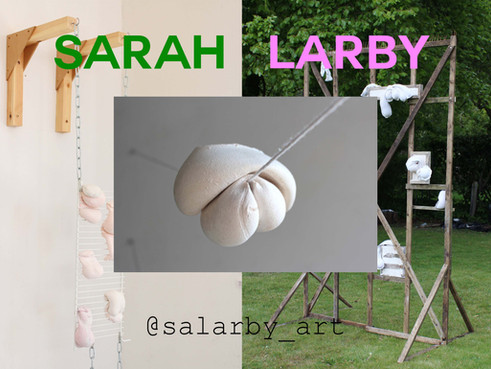 Sarah Larby: Artist of the Week