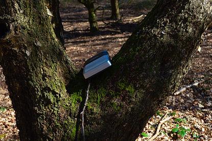 Cassette player in park-7.jpg