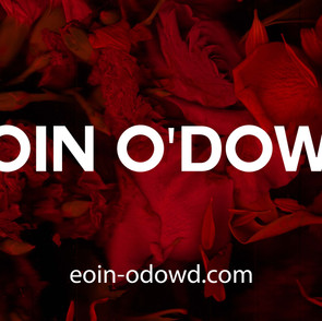 Eoin O'Dowd: Looking to the Future artist spotlight