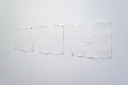 Blind embossings in gallery (2 of 3).jpg